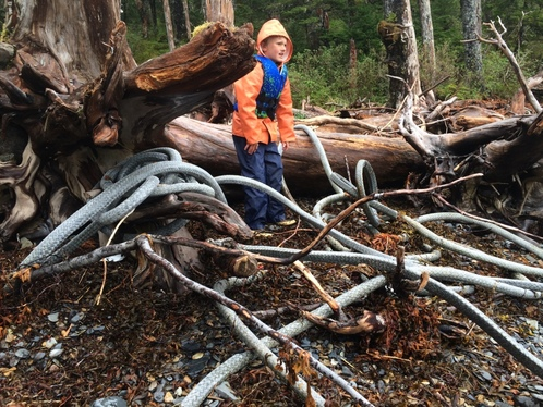 Amy Meissner, Prince William Sound, Alaska. From the post What we found, 2. www.amymeissner.com/blog/what-we-found-2